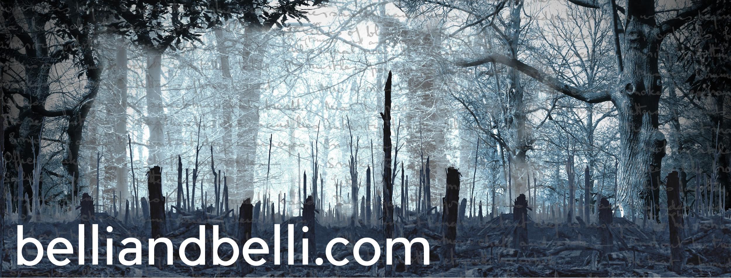 Visit BelliandBelli.com